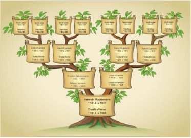 Schmuckahnentafel 4 Generationen Ahnentafel Stammbaum Tafel