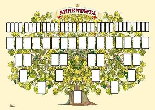 Ahnentafel In Baumform 60 X 42 Cm Grossformat Mit Viel Platz
