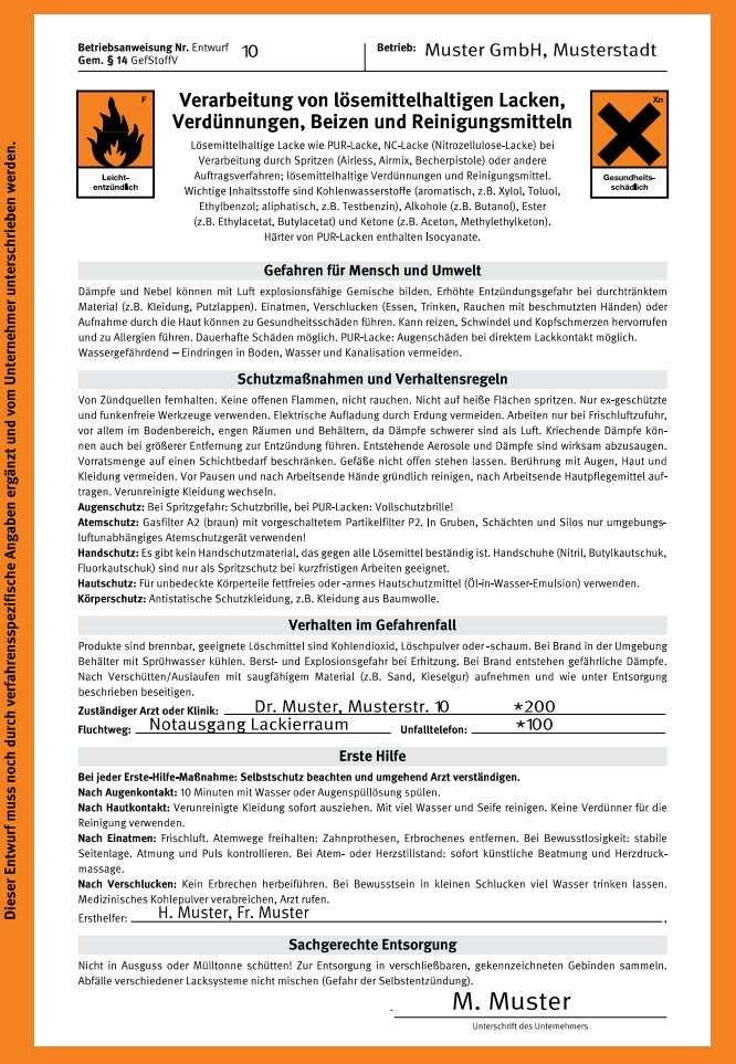 Umwelt Online Demo Archivdatei Bgi 740 Dguv Information 209