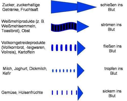 Darstellung Der Kohlenhydrataufnahmegeschwindigkeit Verschiedener