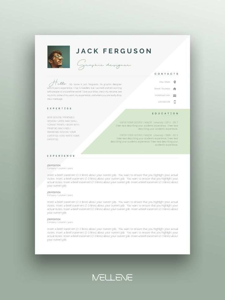 Resume Cv Template For Ms Word Professional Application Cover