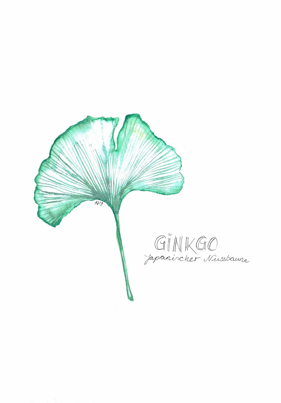 Ginko Blatt Aquarelle In 2020 Bilder Kunstdruck Malerei