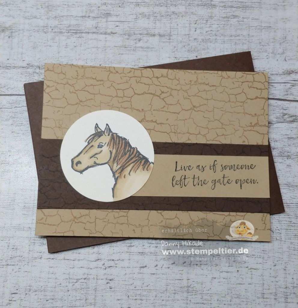 Gutschein Fur Reitstunden Pferde Pferdekarten Tierkarten Und