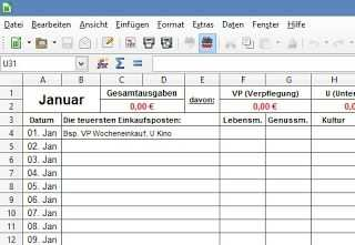 Klassisches Haushaltsbuch Im Excel Format Haushaltsbuch Vorlage