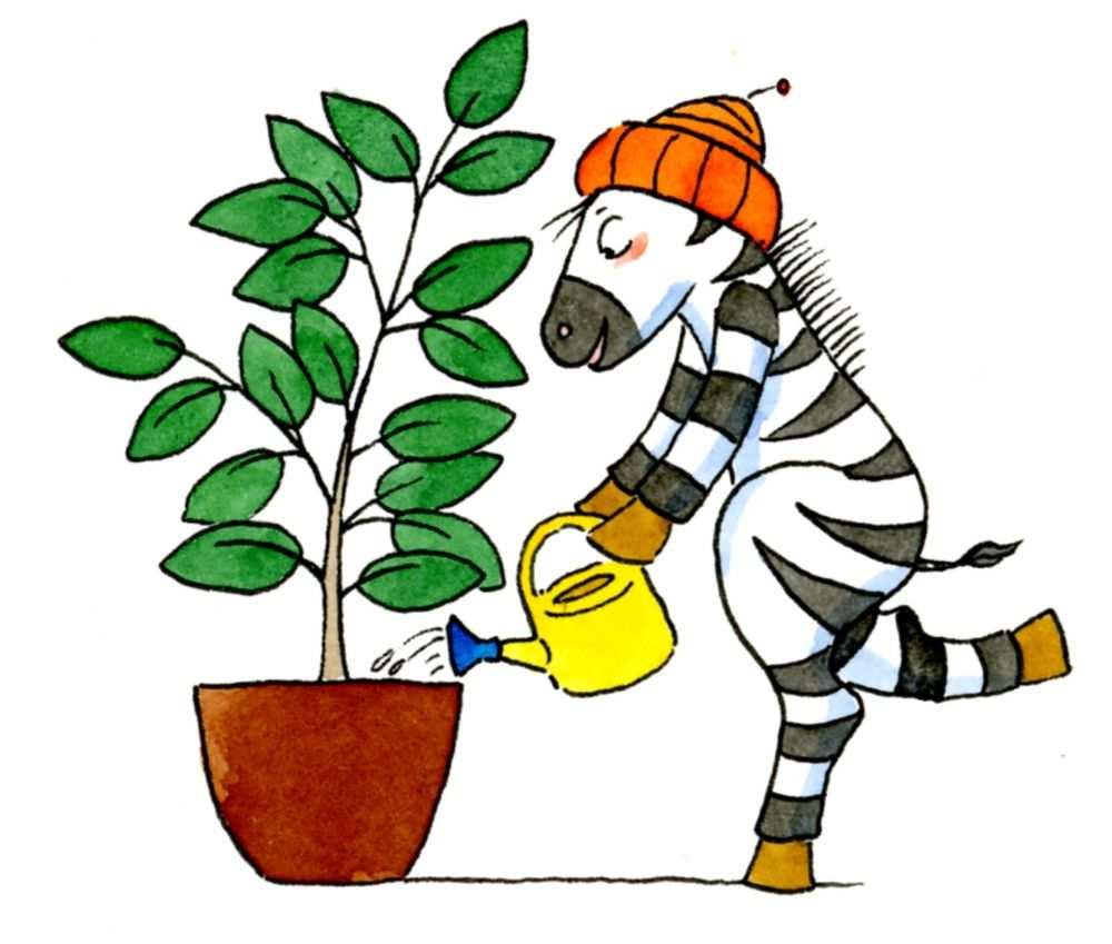 Klassendienste Besser Organisieren Mit Den Zebra Dienstekartchen