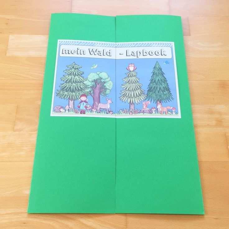 Wald Lapbook Im Sachunterricht Wald Grundschule