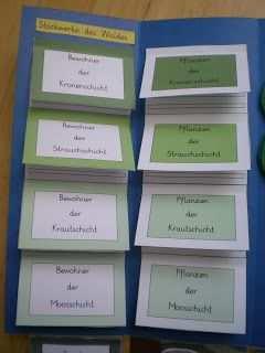 Kruschkiste Fortsetzung 2 Lapbook Wald Wald Grundschule