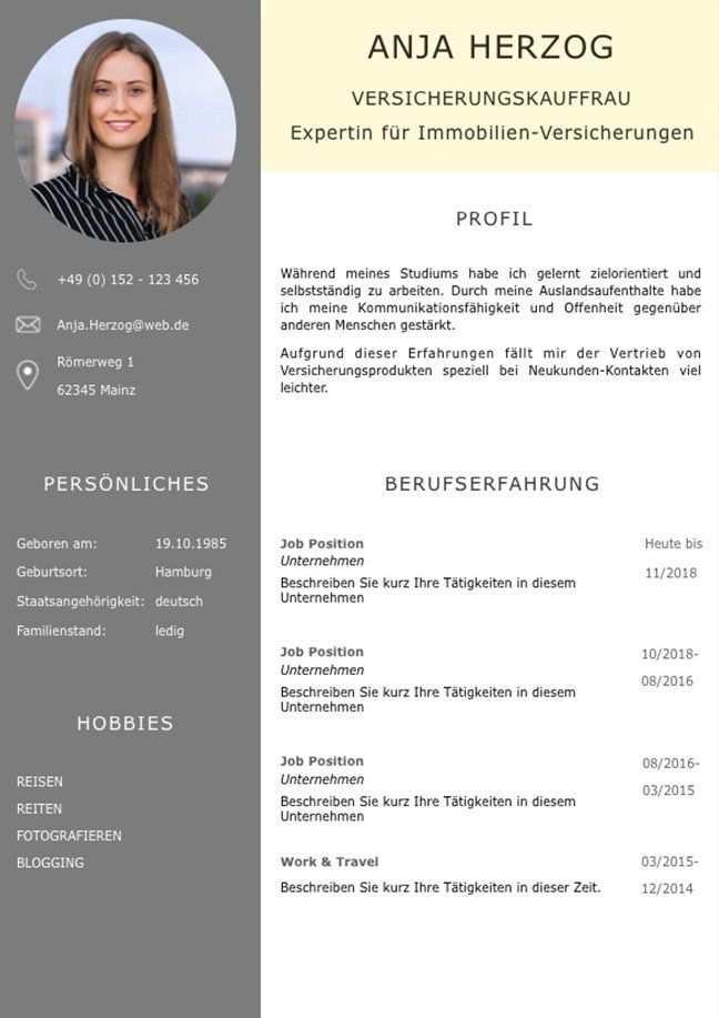 Bewerbungsvorlage Premium Xl Fur Viel Berufserfahrung Download