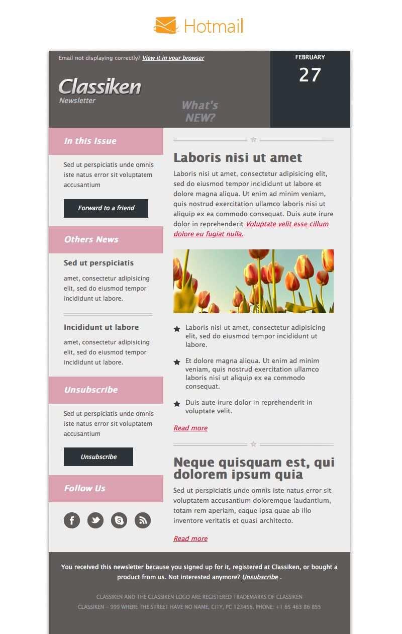 Classiken Html Newsletter Template E Mail Templates Pixeden
