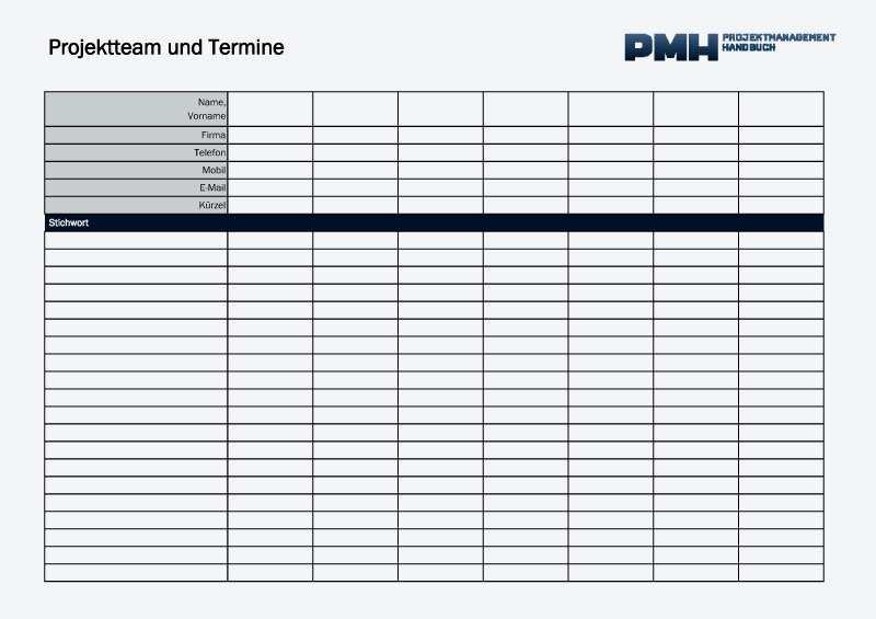 Offene Punkte Liste Excel Projektmanagement Handbuch