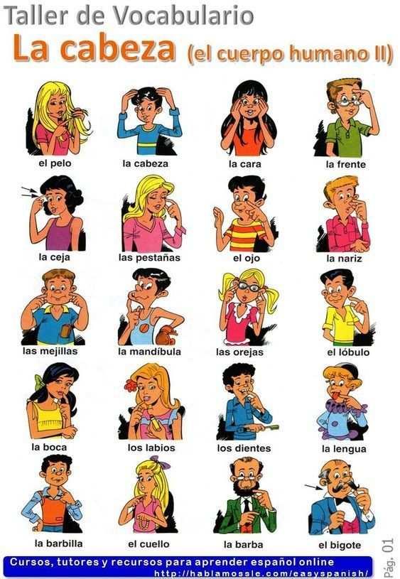 Spanisch Lernen Spanisch Spanisch Grammatik Spanisch Sport Spanisch Verbessern Spanisch Auffrischen Spanisch Spanisch Lernen Spanisch Vokabeln Spanisch