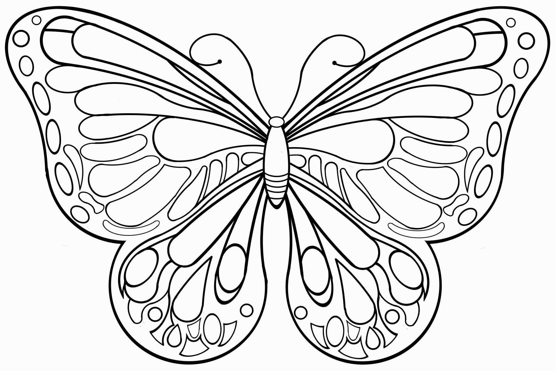 Die Besten 20 Schmetterlinge Ausmalbilder Schmetterling