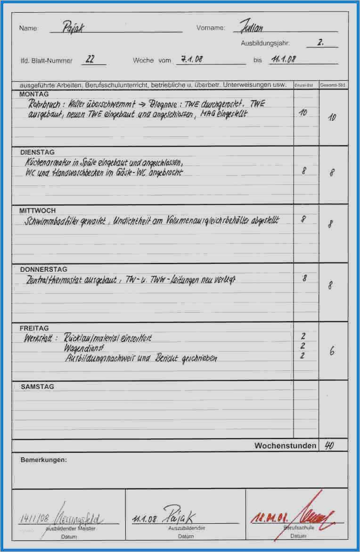 Tabellarischer Tagesbericht Praktikum Vorlage 17 Angenehm Nobel