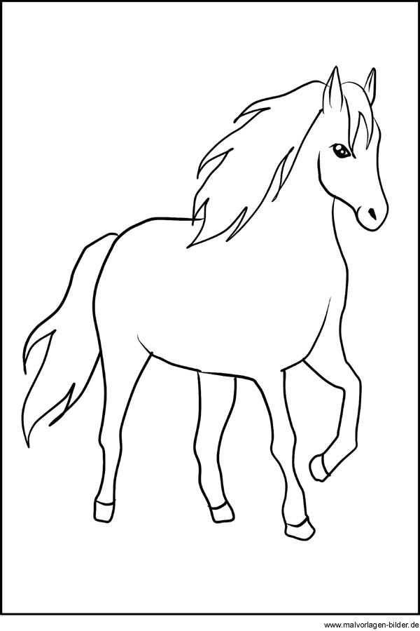 Pferd Window Color Vorlage Malvorlagen Pferde Pferde