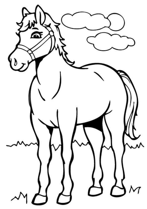 window color vorlagen pferd